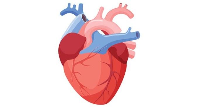 Berbahayakah Operasi Penyakit Jantung Bawaan Pada Anak?